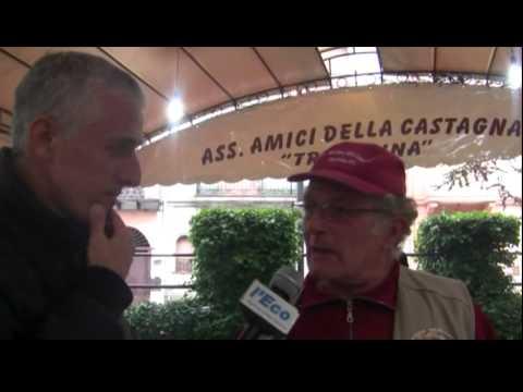 Sagra della Castagna 2011, tredicesima edizione a Trecchina