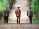 Spi Cgil Basilicata: Invecchiamento attivo e assegno di cura. La Regione Basilicata dia avvio  alla fase attuativa della legge regionale e agli avvisi pubblici