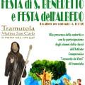 Manifesto Festa dell'Albero 2013