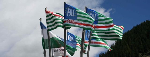 Bandiere faicisl