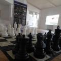Festival degli scacchi immagine