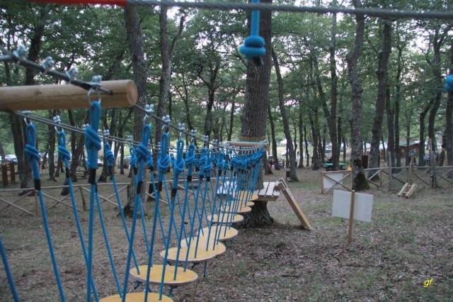 Parco avventura Albano1