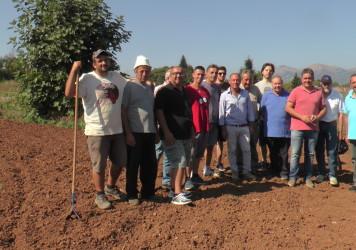 L'Alsia spinge gli agricoltori verso la zafferano